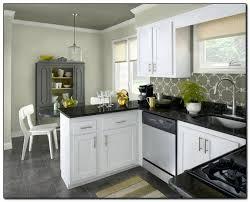 ideas for kitchen colours to paint cabinet paint color ideas expominera2017 com