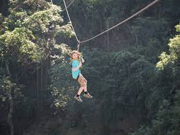 sydney the hills treetops sydney 6 best treetop adventures out u0026 about with kids