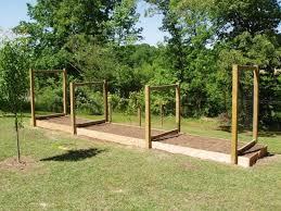 vegetable garden trellis gardening ideas