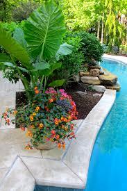 pool pots around waterfall gardening layout misc pinterest