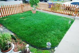 a sea of green responsibly maintaining a green lawn during a
