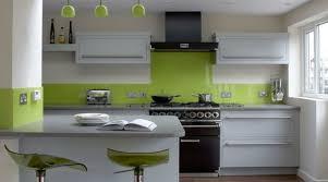 plante cuisine decoration décoration decoration cuisine gris vert 13 strasbourg 09000358