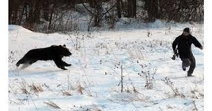 Running Bear Meme - avoid black bear attacks this spring