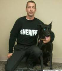 belgian malinois in movies deputy escapes murder attempt thanks to his dog cops say huffpost