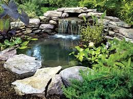 Building A Fish Pond In Your Backyard by 21 Garden Design Ideas Small Ponds Turning Your Backyard