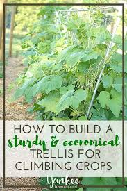 square foot gardening how to construct sturdy economical