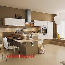 peinture cuisine moderne idee peinture cuisine pour idees de deco de cuisine luxe peinture