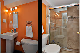 Bathroom Ceilings Ideas by Basement Bathroom Ideas Basement Bathroom Houzz Design