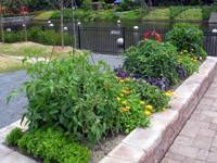 edible landscaping designing your edible landscape garden org