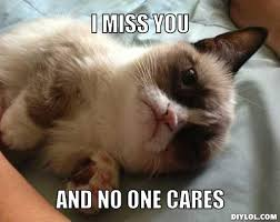 I Miss U Meme - wpid lonelygrumpy cat meme generator i miss you and no one cares