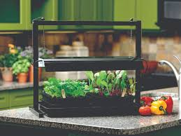 enjoy homegrown flavor with an indoor garden vermont maturity
