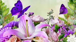 purple butterflies on lilies wallpaper 1405542