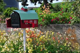 Mailbox Flower Bed Recommendations For Flowers To Plant Around A Mailbox