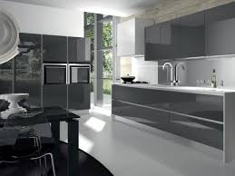 High Gloss Paint For Kitchen Cabinets Style Appealing Black Gloss Kitchen Wall Cabinets Modular