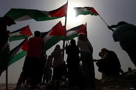 Palistinian Flag Fear Of Palestinian Majority Drives Attacks On Single Democratic