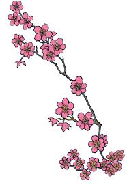 single cherry blossom branch tattoo design photos pictures and