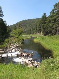 South Dakota where to travel in january images Black hills fishing dakota angler outfitter black hills fishing jpg