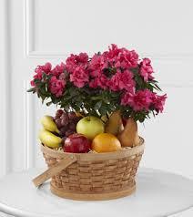 fruits and blooms basket ftd encircling grace fruit plant basket blooms today