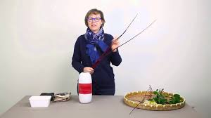 Flower Arranging For Beginners Exploring Ikebana A Simple Arrangement For Beginners Youtube