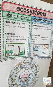 cover page of science project ecosystems interactive notebook ecology food webs food chains
