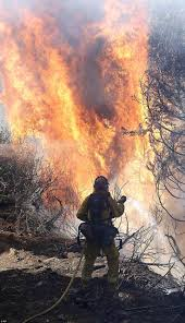 Wildfire Winters California by 47 Best Fire Departments Images On Pinterest Fire Department