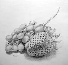 best 25 strawberry drawing ideas on pinterest strawberry art