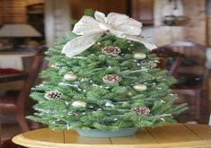 Tabletop Christmas Tree Decorating Ideas by Ordinary Table Top Trees The Tabletop Prelit Christmas Tree