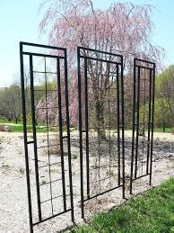 Trellis With Vines Best 25 Metal Garden Trellis Ideas On Pinterest Focal Point In