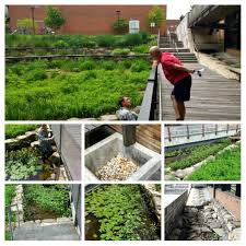 permaculture gardenopolis cleveland