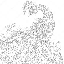 decorative peacock antistress coloring page u2014 stock vector