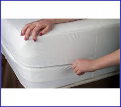 Mattress Cover Bed Bugs Cleanrest Pro Bed Bug Pillow Cover Package Cleanrest Pro Pillow