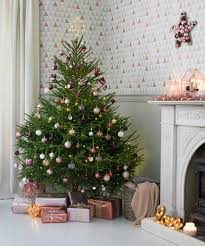 real christmas trees u2013 how to buy decorate and care for your fir