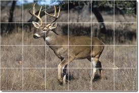 deer moose photo wall tile mural 6 loading zoom