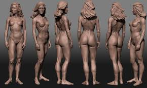 Female Body Reference For 3d Modelling Skecthbook U0026 Wips