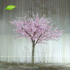best 25 blossom tree ideas on blossoms
