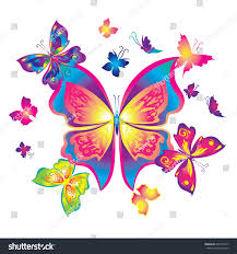 composition butterflies decorate clothes accessories large stock