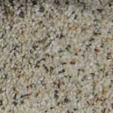 home decorators collection carpet sample galore ii color