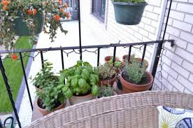 practical ideas for creating functional balcony herb garden