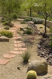 Desert Backyard Landscaping Ideas Best 25 Desert Landscaping Backyard Ideas On Pinterest Desert