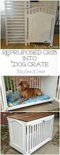 How To Change A Crib Into A Toddler Bed by Best 25 Dog Cages Ideas On Pinterest Dog Kennels And Crates