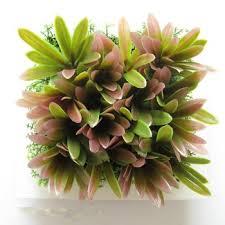 zw007 3d lifelike succulent plants ornamental plants indoor plants
