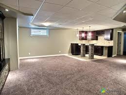 Basement Raised Floor by 100 Raised Floor Tiles Basement The Best Flooring For