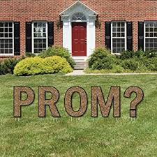 promposal yard sign outdoor lawn decorations prom