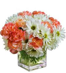 dillons floral springfield florist springfield mo flower delivery avas flowers shop