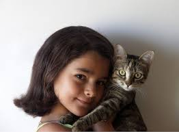 national cat day wikipedia
