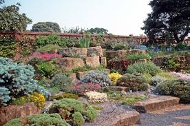 beautiful how to make a rock garden vibrant creative remarkable