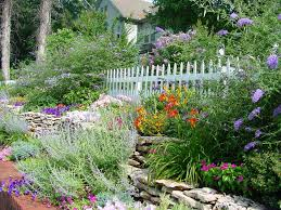 Sloping Backyard Ideas Sloped Backyard Ideas Landscape Traditional With Flowering Plants