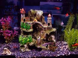 perking up dull aquarium with fish tank decoration tankk