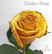 golden roses golden glitter and tinted ecuador direct roses