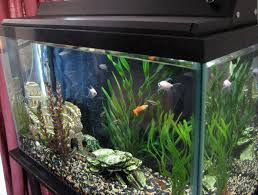 30 led aquarium light aqueon led aquarium light fixture 30 inch home design ideas
